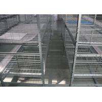 China Hot Dip Galvanized Layer Chicken Cage System Easy Use Free Layout Design factory