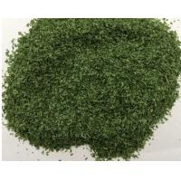 China DRIED PARSLEY LEAVES 5X5MM factory