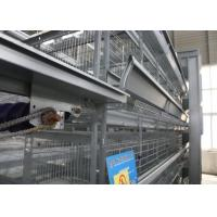 China Professional Automatic Egg Collection System Save Energy Consumption For Layer House factory