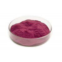 China Anthocyandins 5% Bilberry Herbal Extract Powder For Body factory