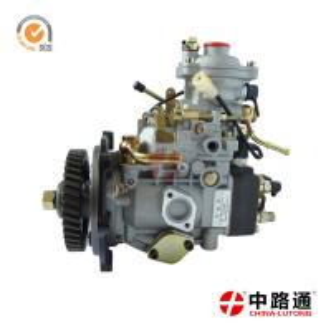 China Zexel Diesel Injection Pump Nj-Ve4/11f1900L005 for Jmc, Gmc factory
