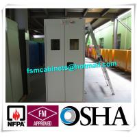China Fire Resistance Gas Cylinder Storage Cabinet , Gas Detector Industrial Safety Cabinet factory