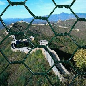 China Hexagonal Wire Mesh (JH-027) factory