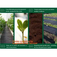 China Agricultural plastic ground cover weed mat, pp weed control mat, for greenhouse and outer use,ground cover, weed mat, ma factory