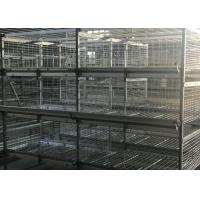 China Professional 4 Tiers Poultry Breeding Cages High Labor Production Efficiency factory