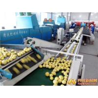 Buy cheap Easy Operation Lemon Juice Processing Line Machinery In Silver Color CFM-FD-200 from Wholesalers