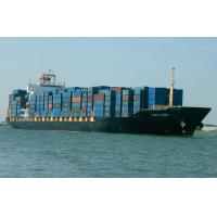 China FCL Ocean Freight to West Africa from Shenzhen factory