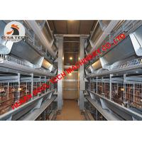 China Ecuador Poultry Farm Hot Galvanized Cage & Chicken Cage & Battery Chicken Coop & Battery Layer Cage & Laying Hen Cage on sale