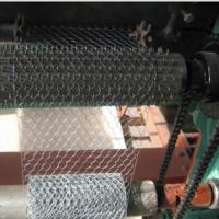 China Electro Galvanized Chicken Wire Netting for Wall Plastering and Building on sale