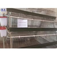 China Galvanized Chicken Breeding Cages Easy Installation 20 Years Life Duration on sale