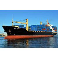 China FCL Sea Freight Shipping to South America from Shenzhen factory