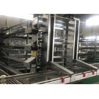 Buy cheap Automatic layer chicken cage system for South Africa poultry farm from wholesalers