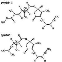 Buy cheap Baicao No.1 Pyrethrin from Wholesalers