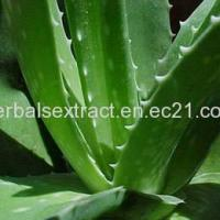 Buy cheap Aloe Vera Extract,Aloe Barbadensis Miller from Wholesalers