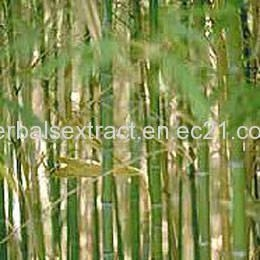 Quality Bamboo Leaf Extract,Phyllostachys Nigra for sale