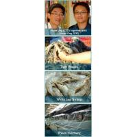 Buy cheap Prawn Culture from Wholesalers