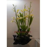 Buy cheap CLAY FLOWERS ORCHID (Oncidium) from Wholesalers