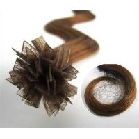 Quality Pre-bonded Hair Extension wholesale