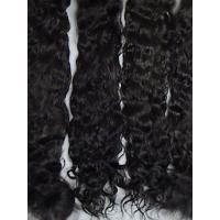 Buy cheap Exquisite Premium ~ Black/Brown ~ 8-9 in. from Wholesalers
