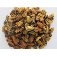 Quality MUSSEL Product Name:MUSSEL wholesale