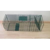 Buy cheap Collapsible One-door Live Animal Cage Trap For Raccon,Stray Cat,Groundhog, Opossum,Armadillos SD649 from Wholesalers