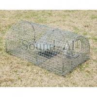 Buy cheap Traps and Cages Home Page Multi-catch mouse trap SD634 from Wholesalers