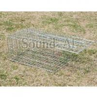 Buy cheap Traps and Cages Home Page Mouse traps SD636 from Wholesalers