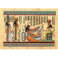 Buy cheap Papyrus Papyrus from Wholesalers