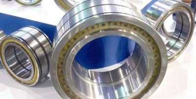 China Full roller bearings (Double Row Full Complement Cylindrical Roller Bearings) factory