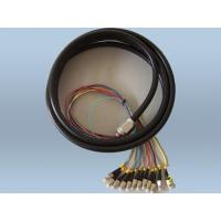 Buy cheap Fiber Optic Passive 12 cores Military Ruggedized Waterproof Pigtail Cable from Wholesalers