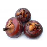 Quality Fresh foods IQF Water chestnut wholesale