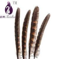 Buy cheap chicken feather trims,pheasant feather ribbons/fringes for cloth accesory from Wholesalers