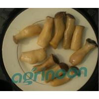 Buy cheap Brine King Oster Mushroom from Wholesalers