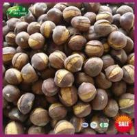 Buy cheap 2014 Top Sale Organic Frozen Smiling Chinese Chestnuts Roasting from Wholesalers