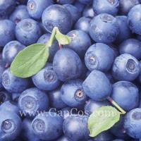 Buy cheap Blue Berry Extract from Wholesalers