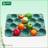 China Biodegradable paper pulp dry fruit tray apple tray on sale
