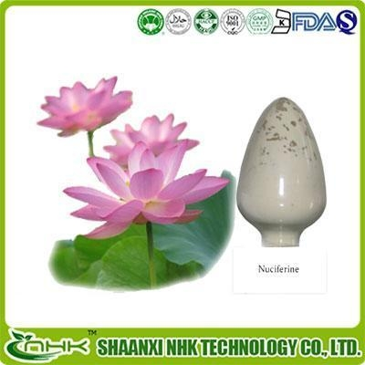 Quality Herbal Supplements Lotus Leaf Extract for sale