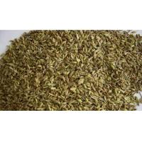 Buy cheap Fennel Seeds from Wholesalers
