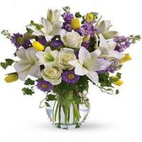 Buy cheap Mother's Day Spring Waltz.No.103 delivery flower to australia sydney from Wholesalers