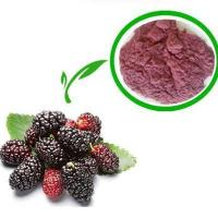 Buy cheap pure natural 10:1 powdered bulk mulberry fruit extract from Wholesalers