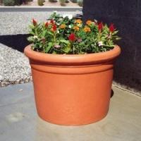 Buy cheap Plastic Planters Plastic Straight Sided Cylinder from Wholesalers