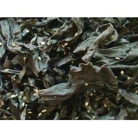 Quality Seasoning ready-to-eat seaweed wholesale