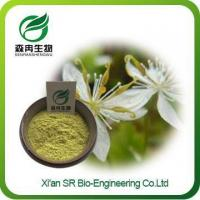 Buy cheap Coptis Extract, Factory Supply Organic Berberine Extract, Wholesale Coptis Powder from Wholesalers