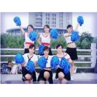 Buy cheap Cheerleader Pom Pom Set with 2pcs for Sports from Wholesalers