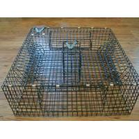 Buy cheap Commercial crab traps assisting with harvesting profits from Wholesalers