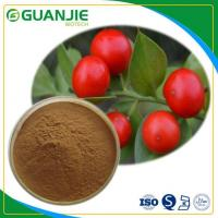 Buy cheap Butcher's Broom P.E Ruscus Aculeatus Extract Hot Sale Ruscogenin Powder L Hot Sale And Sample Free from Wholesalers