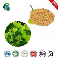 Buy cheap High Quality Gingko Biloba Extract Powder from Wholesalers