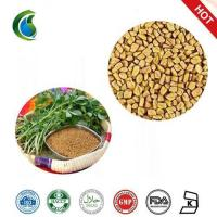Buy cheap Medicinal Testofen Fenugreek Trigonella Foenum-Graecum Seeds Extract Powder from Wholesalers