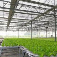 Buy cheap Greenhouse NFT Hydroponic Growing System for Tomato and Lettuce from Wholesalers