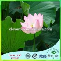 Buy cheap Lotus Root Powder Extract 20:1 /Lotus Seed Extract Nuciferin 0.2% 1% Lotus Leaf Extract from Wholesalers